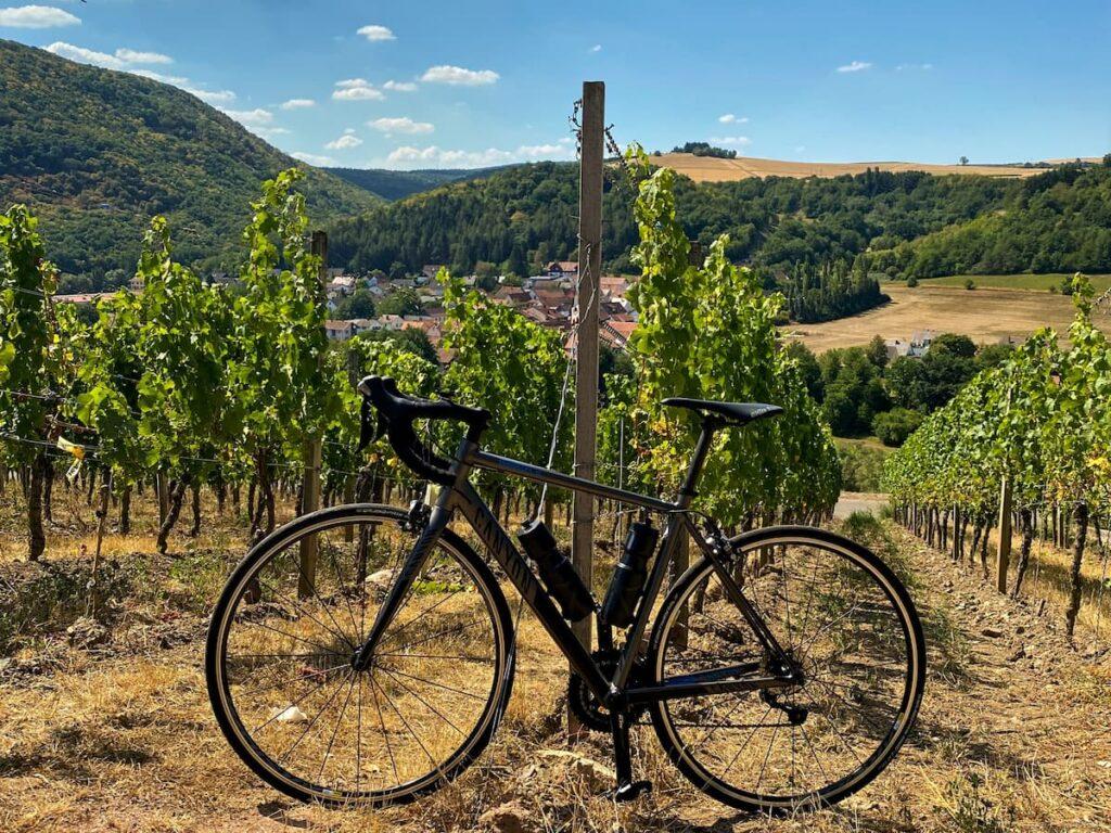 wine-and-bike
